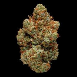 Fleur de CBD pas cher OG Kush 17,3%