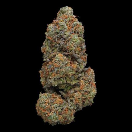 Flower CBD GrandDaddy Purple 17.9%.
