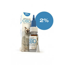 Olej CBD dla kotów 2%.