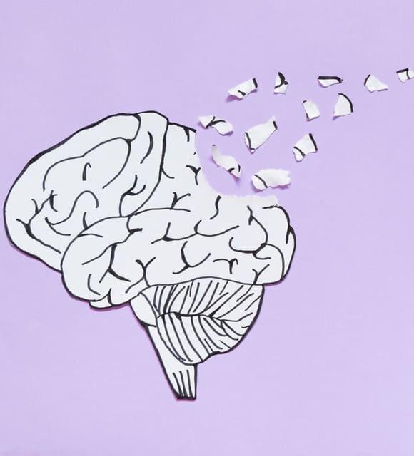 Le CBD est-il efficace contre la maladie d'Alzheimer