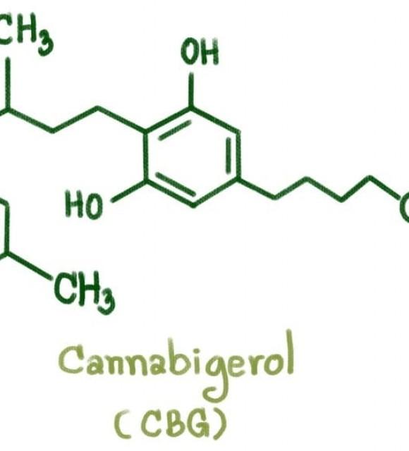 cbg cannabigerol